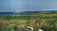 Isola e Castello a Portopalo di C.P.  - Portopalo di capo passero (2749 clic)