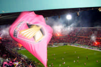 Forza Palermo PALERMO leo lima