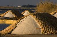 SALINE DI ETTORE  - Marsala (2037 clic)