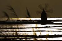 SALINE DI ETTORE  - Marsala (2215 clic)