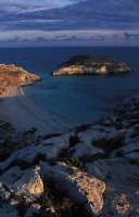 UNA VEDUTA DI BAIA E ISOLA DEI CONIGLI  - Lampedusa (5433 clic)