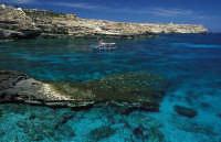 UNA VEDUTA DI CALA PISANA  - Lampedusa (10634 clic)