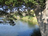 Lago   - Ganzirri (5568 clic)