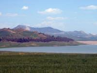 Lago Ogliastro.  - Raddusa (6771 clic)