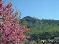 Enna. Panorama nord, la Rupe di Cerere e il Castello di Lombardia  - Enna (3548 clic)