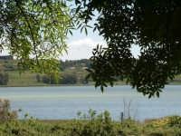Enna. Lago di Pergusa. Sulle sue rive ha avuto luogo il mito del rapimento di Proserpina da parte di Plutone, re degli inferi.  - Enna (5173 clic)