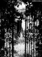 Ingressi abbandonati  - San giovanni la punta (3926 clic)