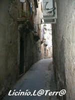 Vicoli d'Ortigia Vicolo dell'Olivo, nel quartiere della Giudecca, Iureca in Siracusano  - Siracusa (4094 clic)