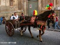 Carretto Siciliano  - Noto (3518 clic)
