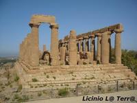 La Valle dei Templi di Agrigento (1394 clic)