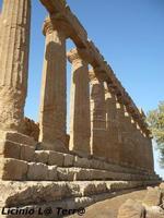 La Valle dei Templi di Agrigento (1738 clic)