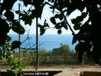Il Canale di Sicilia visto dalla campagna  - Cava d'aliga (2474 clic)