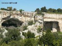 Alla sinistra la grotta dei Cordari a destra la Grotta del Salnitro, Latomia del Paradiso, Parco Archeologico della Neapolis. Queste grotte sono state interamente scavate dall'uomo per l'estrazione della pietra, ad oggi la loro conformazione è stata modificata da scosse telluriche che si sono susseguite nei secoli, che hanno fatto crollare parti del banco roccioso, creando un'atmosfera unica al mondo.   - Siracusa (13475 clic)