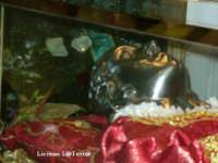 Maschera d'argento adagiato sul viso di S. Lucia. Il corpo di S. Lucia in visita a Siracusa da Venezia in Dicembre 2004. Un ringraziamento personale a entrambe le Curie dell'avvenimento storico.  - Siracusa (8070 clic)