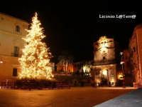 Albero di Natale 2004 in Piazza Duomo di sera, sullo sfondo la Chiesa di S. Lucia la Badia  - Siracusa (4774 clic)