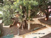 Villetta Marina ad Ortigia  - Siracusa (2230 clic)