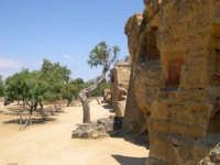 Valle dei Templi  - Agrigento (2504 clic)