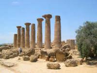 Valle dei Templi  - Agrigento (2735 clic)