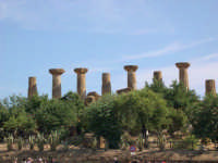 Valle dei Templi  - Agrigento (2768 clic)