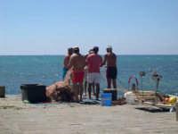Il molo e i suoi pescatori  - Sampieri (2729 clic)