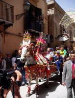 Festa di Sant'Angelo - Sfilata dei muli parati (foto scattata da G. Cantavenera)  - Licata (11822 clic)