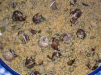Cous Cous di babbaluci (=lumache)  - Marsala (10381 clic)
