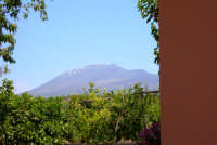 view of mount etna by gianferrante farmhouse & country inn sicily  - Paternò (2040 clic)