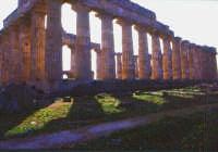 tempio greco, esterno   - Selinunte (3507 clic)