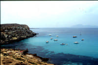 isola di Favignana, Cala Azzurra   - Egadi (7553 clic)