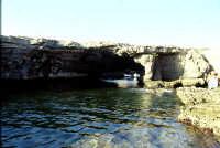 isola di Favignana Grotta Perciata    - Egadi (6780 clic)