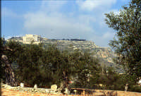 Palazzo Adriano campagna   - Palazzo adriano (5918 clic)