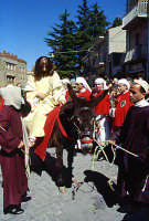 Domenica palme, ingresso Gesù a Gerusalemme   - Enna (3320 clic)