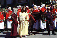 Domenica palme, ingresso Gesý a Gerusalemme ENNA Giuseppe Iacono
