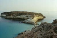 Isole Pelagie Lampedusa isola dei conigli   - Lampedusa (5972 clic)