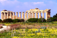 tempio greco   - Selinunte (8358 clic)