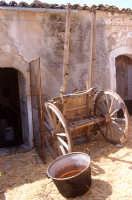 museo a cielo aperto, carretto   - Giarratana (2762 clic)