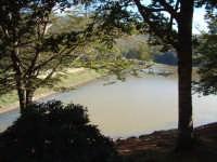Lago Maulazzo - Parco dei Nebrodi   - Cesarò (4504 clic)