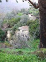 Vecchio casolare nei pressi del paese  - Motta camastra (4951 clic)