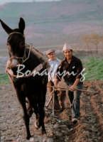 Sicilia 1980/82 civilta' contadina: Nostalgia? MAZZARINO GAETANO BONAFFINI