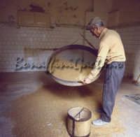 Sicilia 1980/82 civilta' contadina: Nostalgia?  - Mazzarino (3313 clic)