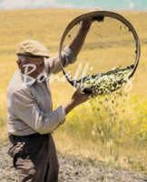 Sicilia 1980/82 civilta' contadina: Nostalgia?  - Mazzarino (4593 clic)