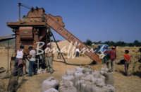 Sicilia 1980/82 civilta' contadina: Nostalgia?  - Mazzarino (4998 clic)