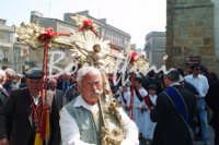 Processione del Fercolo delSIGNORE DELL'OLMO  - Mazzarino (2941 clic)