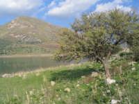 Lago di Caccamo  - Caccamo (8301 clic)