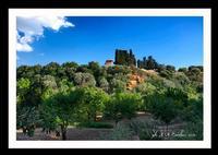 Agrigento - Valle dei Templi (2203 clic)