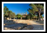 Agrigento - Valle dei Templi (2138 clic)