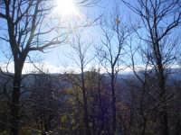 Che sole!!!  - Longi (4700 clic)