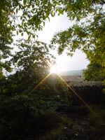 Sentivo un forte calore che si stava espandendo nell aria.Il sole spunta tra le nuvole e filtra tra i rami degli alberi;sembrava di toccarlo con un dito.  - Etna (2926 clic)