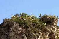 Isola Bella  - Taormina (1789 clic)
