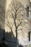 Abside del Duomo  - Messina (2464 clic)
